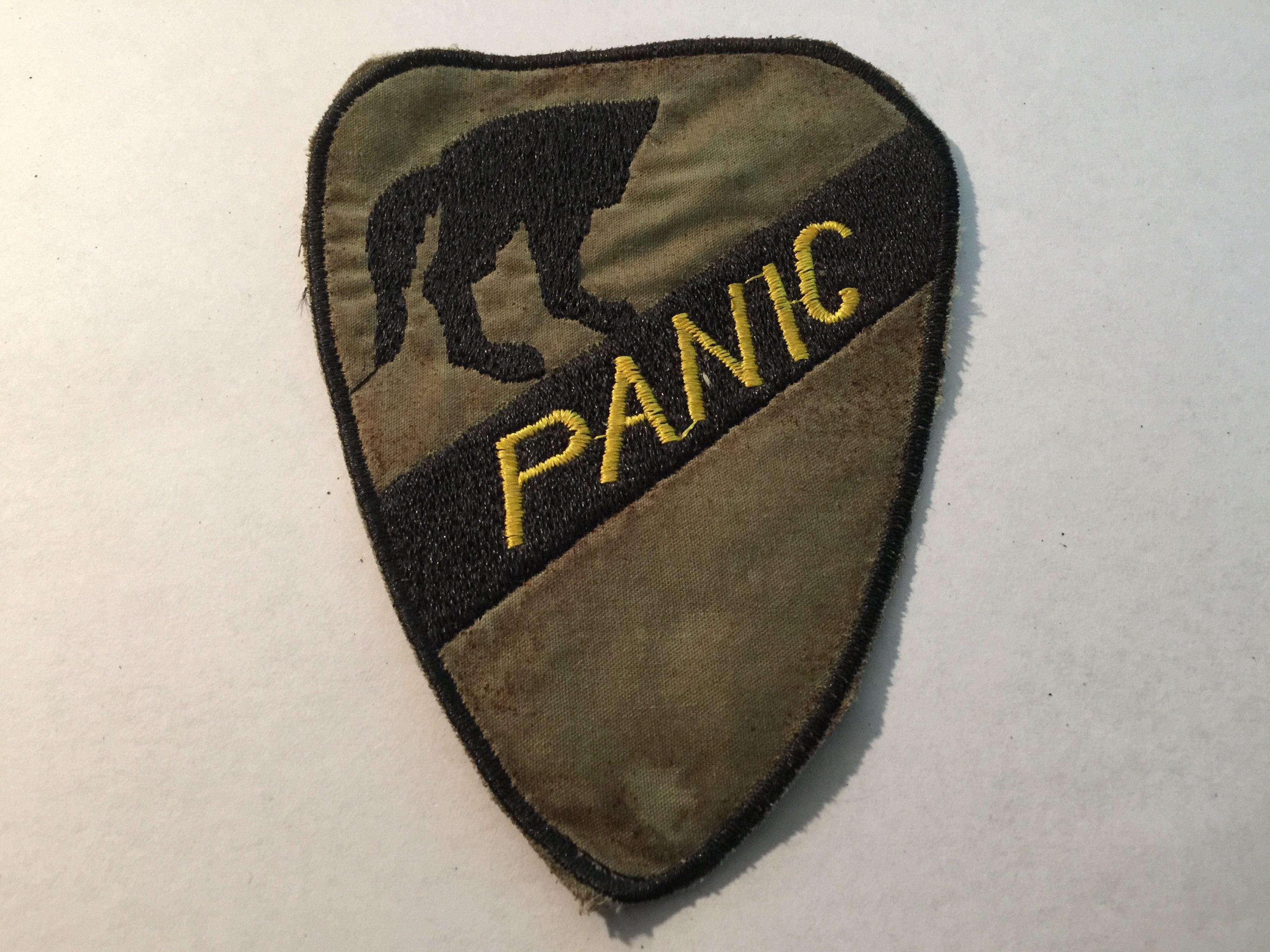 1st Air Cavalry division Operation Panic Vietnam War